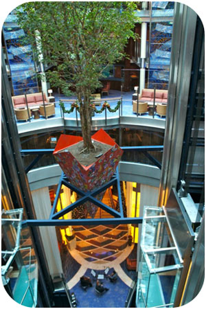 A real tree is suspended above the atrium